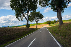 View of empty road with trees Royalty Free Stock Photo