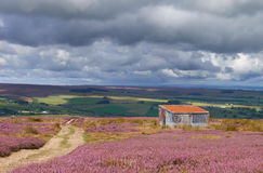 View of the English Countryside. In the summer, Blanchland,Northumberland, North East England Stock Images