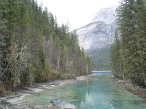 View entering Kinney Lake. Water flows from the deep lake making more colors, at the base of Mt. Robson, Alberta, Canada Stock Photos