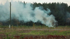 View of environmental hazards - burning forest stock video footage