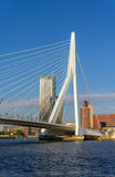 View of Erasmus Bridge in Rotterdam, Netherlands Royalty Free Stock Image