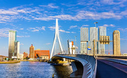 View of Erasmus Bridge in Rotterdam Royalty Free Stock Image