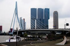 View of Erasmusbrug bridge in Rotterdam Stock Images