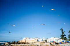 View of Essaouira, Morocco Stock Photos