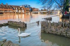 View of Eton Bridge in the 2014 floods. Stock Image