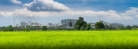 View of a factory in the middle of a green rice field. Royalty Free Stock Photography