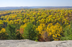 View of Fall Colors in Algonquin Park Ontario Royalty Free Stock Photography