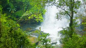 View of the falls through the trees. Shoot with Zoom. Chiang Rai, Thailand stock video