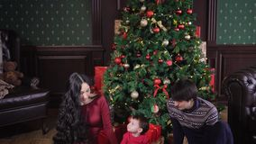 View of family idyll. New Year`s Eve in a rich family. In the middle stands a tall Christmas tree, which is decorated stock video footage