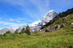 View at the famous Eiger in Switzerland. View at the famous mountain the Eiger, the Eiger northface. Berner Oberland, Switzerland royalty free stock photography