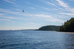 View of the famous island of Valaam in morning Royalty Free Stock Images