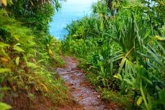 View of the famous Kalalau trail along Na Pali coast of the island of Kauai Stock Photo