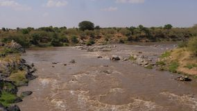 A View Of The Famous Rapids Of The Mara River With Brown Water In Africa. View of the rapids with rocks and boulders on the Mara river with brown water. In The stock footage