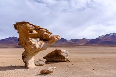 Stone Tree rock formation in Bolivia. View of the famous Stone Tree, or the Árbol de Piedra, rock formation at the Eduardo Avaroa Andean Fauna National stock photo