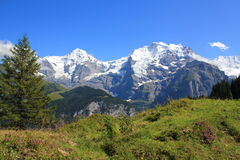 View at the famous Swiss mountains, the Eiger, Jungfrau. Mönch. Mountain landscape in Switzerland royalty free stock image
