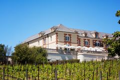 Famous Napa Winery Domaine Carneros with vines royalty free stock photography