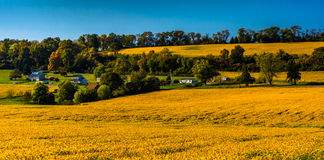 View of farm fields and  hills in rural York County, Pennsylvani Royalty Free Stock Images