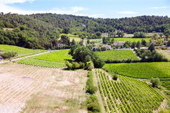 The view of farm fields in Provence Stock Images