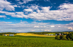 View of farm fields and rolling hills from a hill near Cross Roa Stock Photos