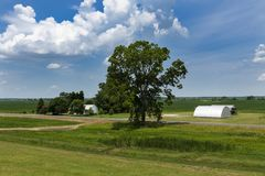 View of a farm in a rural area of the State of Mississippi, near the Mississippi river. USA stock photography