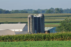View of farm with slio in rural Lancaster Pennsylvania Royalty Free Stock Photography