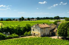 View of a farmhouse and rows of grape vines growing in a vineyard, Saint-Emilion. Vineyard landscape near Saint-Emilion, Bordeaux, France stock image