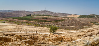 View of the farmland, settlement Shilo in Israel Royalty Free Stock Image