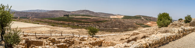 View of the farmland, settlement Shilo in Israel Royalty Free Stock Photos