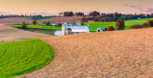 View of farms and rolling hills at sunset, in eastern York Count Stock Photography