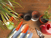 View favorite hobby horticulture Royalty Free Stock Photos
