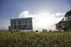 A field with flowers and a green energy solar panel  stock image