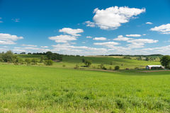 View of a field in Illinois country side Royalty Free Stock Image