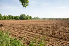 View of a field ready to be planted stock images