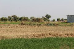 A view of fields in the country of Punjab. A view of country village roads and fields in Punjab, Pakistan, Asia, India, where a brick kiln emitting smoke and Royalty Free Stock Photo