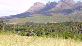 View Of Fields And Mountains In South African Landscape stock footage