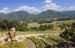 A view of fields and mountains in the village of Pai Stock Photo