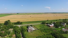 View of the fields through the village. Harvesting of wheat. Countryside. stock video