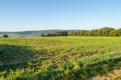 View of fields and woods in southern Belgium Stock Photo