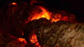 Burning logs in the fireplace. stock video footage