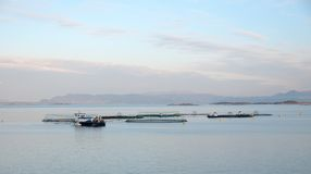 The view of fish farm in a fjord. Early morning stock photos