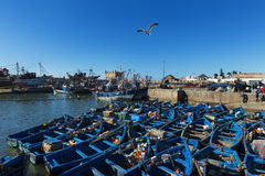 View the fishing harbour of Essaoira with the traditional fishing boats in the Atlantic Coast of Morocco, Northern Africa. Stock Photos