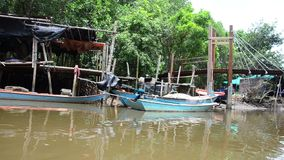 View of fishing village and Mangroves forest from service long tail boat. For travel on river of Pak Nam Prasae town in Rayong, Thailand stock video footage
