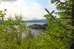 View on fjord from forest Stock Photo