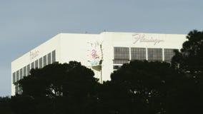 View on the Flamingo casino stock video