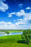View on flood field in spring Stock Photos