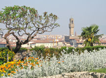 View of Florence, Italy. Vista of Florence, Italy with sumac tree and flower garden in foreground stock photo
