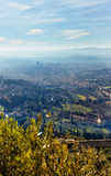 View of Florence. Tuscany Stock Photo