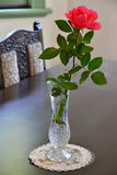 View of the flower decoration in the room. View of the interior red flower decorations Stock Image
