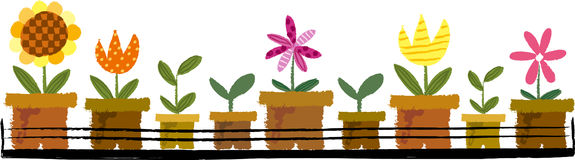 The view of flowerpot Royalty Free Stock Images