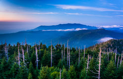 View of fog in the Smokies from Clingman's Dome Observation Towe Stock Photos